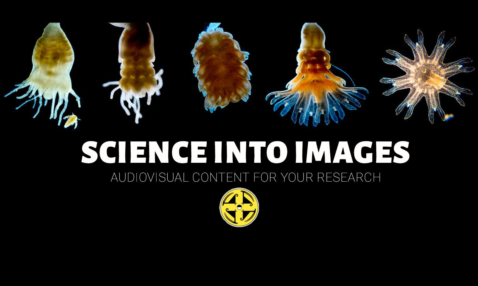 SCIENCE INTO IMAGES
